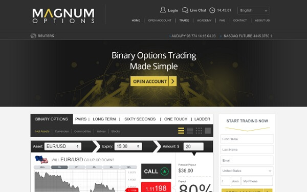 Magnum Options Website Preview